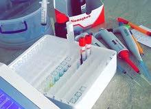 مختبر المجد