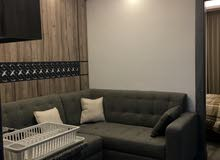fully furnished two bedrooms apartment for rent