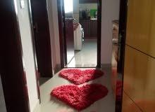 شقة مفروشه استديو غرفه وصاله وغرفتين dubai