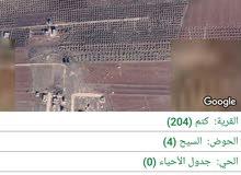 للبيع اراضي كتم حوض السيح مشترك بيع 6 دونمان ونصف من 37 دونم بسعر مغري