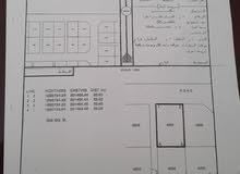 صحنوت د الشمالي الخط الأول شارع 48 متر