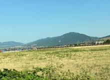 اراضي للبيع في جورجيا تبليسي قسط بلا فوائد على 24 شهر