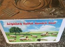 مساء الخير  ابي واحد سعودي يبيع جبنة غنم بالسعودية واله مربح 11الف ريال