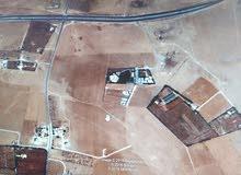 جنوب عمان حوارة 11 دونم فيلا ومزرعة بسعر مناسب جدا