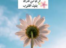 المنصوره شقه ايجار الجلاء بجوار البوسطه