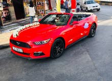 Ford Mustang 2017 For Rent