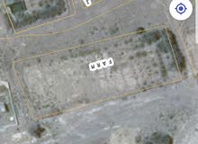 مزرعة للإيجار في منطقة الفليج التابعه لولاية صور