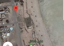 بيت شعبي علي البحر