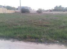 قطع ارض في السبعه مشروع الموز قريب من مسجد الرحمة