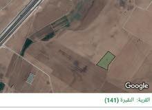 للبيع ارض 12.5 دونم في النقيره على زميلات القراقير