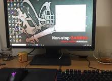 Gaming pc and gaming monitor