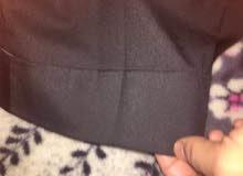 tedlapidos suit