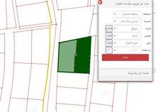 قطع اراضي للبيع في الاردن -عمان - صويلح