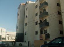 شقة أرضية 135م مع ترسات 70م و 20م وبلكونه كبيره مع مدخلين مستقلين طريق المطار من المالك