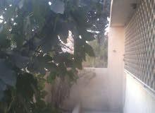 منزل مستقل للبيع وادي النصر
