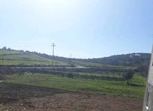 apartment for sale in Ajloun- I'bbeen