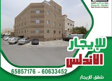 Best property you can find! Apartment for rent in Ashbeliah neighborhood