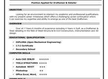 Draftsman Freelancer