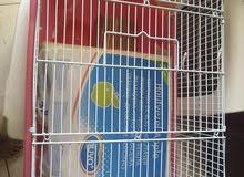 huge hamster, bunny, guinea pig cage