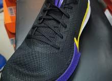 Nike mamba Original Shoes For Sale