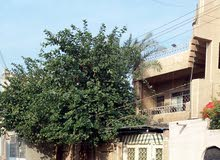 Villa property for rent Baghdad - Hosseinia directly from the owner
