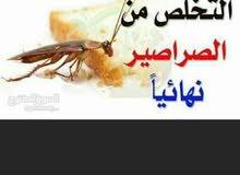 اقوى المبيدات للتخلص من الحشرات