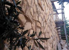 منزل ريفي صغير في سوف نظام ( شاليه) بسعر مغري