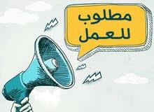 مطلوب مندوب مبيعات شركة زعتر وبهارات