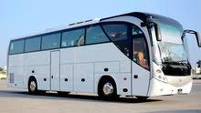 باصات سياحية 50 راكب للرحلات اليومية