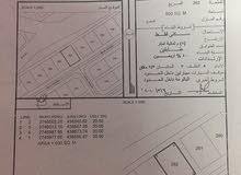 ارض سكنية البليدة رقم القطعة 262