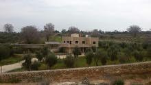مزرعة للبيع في الصبيحي - حوض أبو الهيل