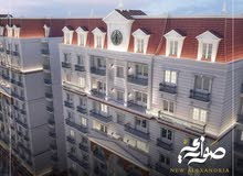 Sawary compound new Alexandria