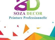 شركة SOZA DECOR جميع أنواع الصباغة و الديكور