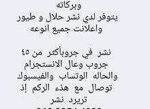 نشر الحلا ل والطيو ر