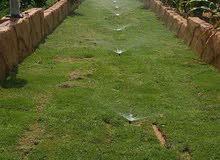 ديكورات شلالات تنسيق حدائق شيكات ري تنسيق حدائق متنزهات