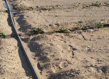ارض بطريق مصر الفيوم الصحراوي