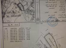 للبيع ارض ف الرستاق قريبه من الجامع