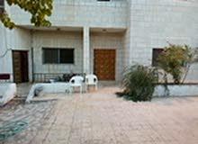 apartment for rent in Al Karak city