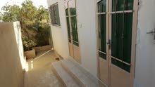 apartment for rent in ZarqaJabal Al Ameer Hasan