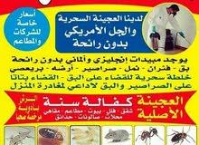 المهندس لمكافحة الحشرات والقوارض بأرخص الأسعار مع كفالة 6 شهور