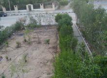 شقة لقطة للايجار بمدينة بدر 2000