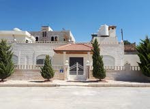 excellent finishing palace for rent in Amman city - Shafa Badran