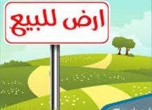 ارض للبيع في طرابلس صلاح الدين