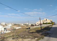 ارض سكنية للبيع في بلعاس