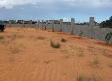 ارض في بداية القارابولي للبيع مقسم عطايا طريق ترابي 200متر  والأوراق سليمة ملك أصلية عالة