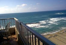 منتجع Dream beach  في العجمي و اول خط الساحل