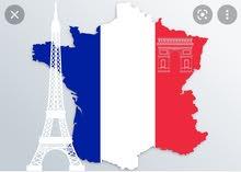 معلمة لغة فرنسية
