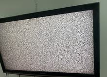 تلفزيون
