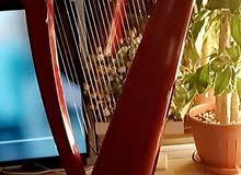 27 string red harp