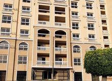 شقة 205 متر ابراج الكوثر مدينة السويس برج 3 الرئيسي